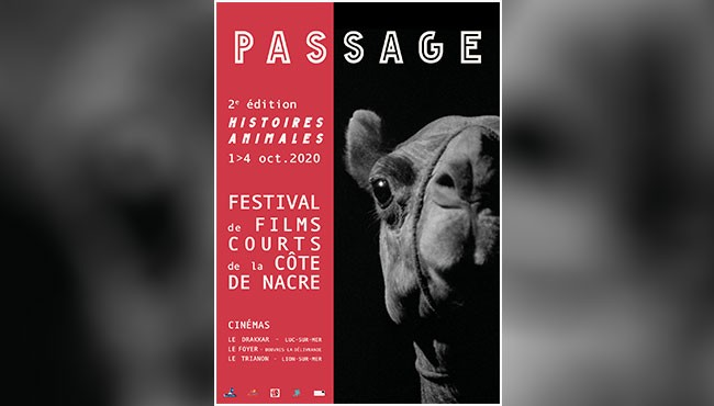 Festival Passage